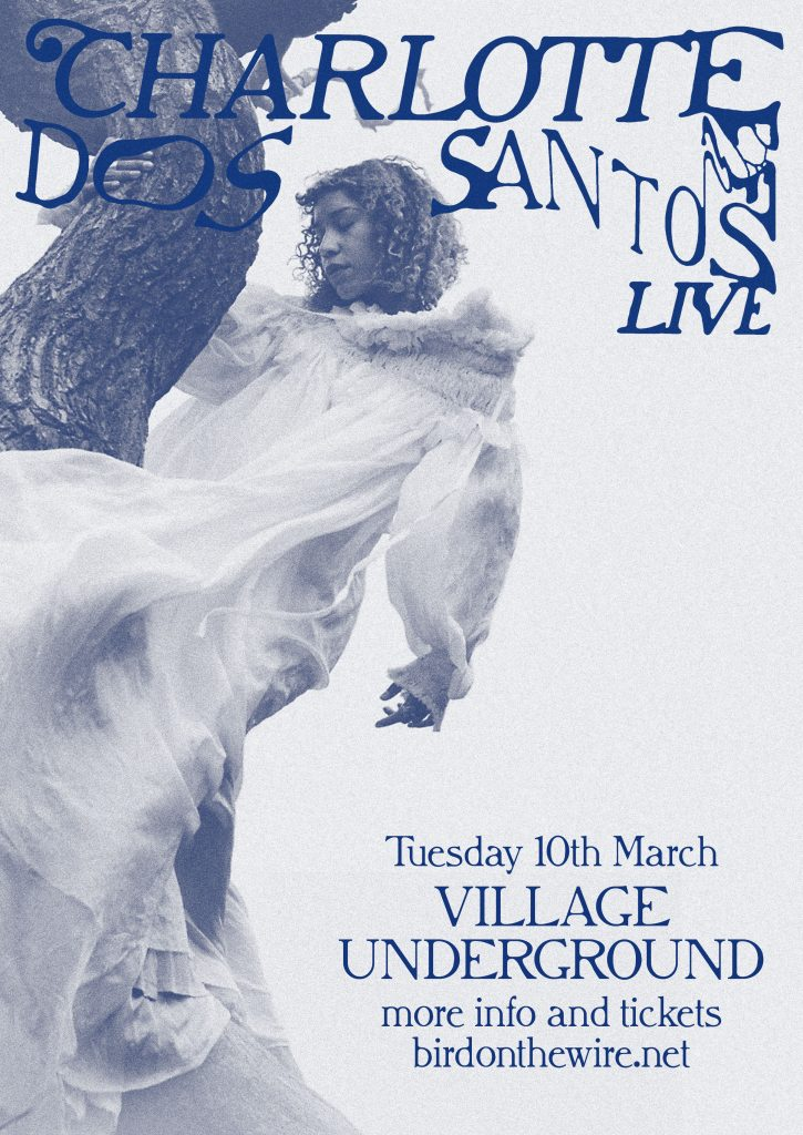 Charlotte-Dos-Santos-AdMat-Poster